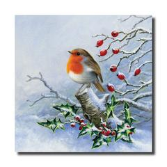 A Robin sat on a holly tree branch in the snow