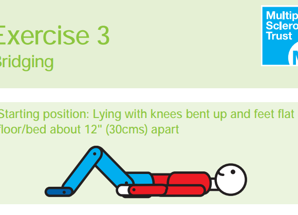 The MS Trust Exercise Guide
