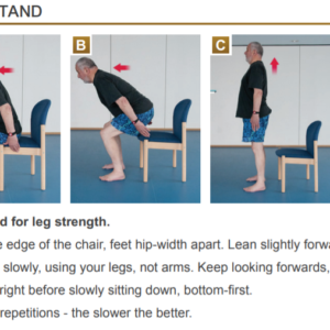 Gentle Strength Exercises