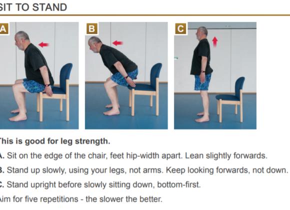 Gentle Strength Exercises